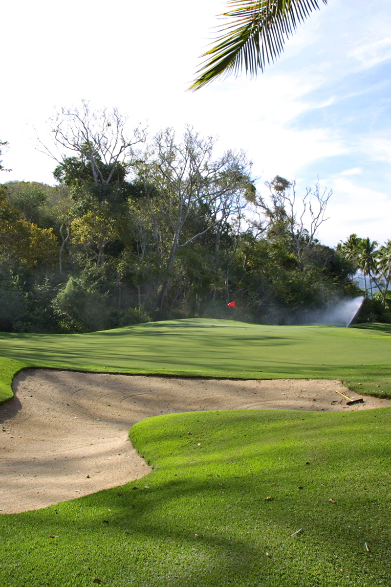 El Tamarindo Golf Club